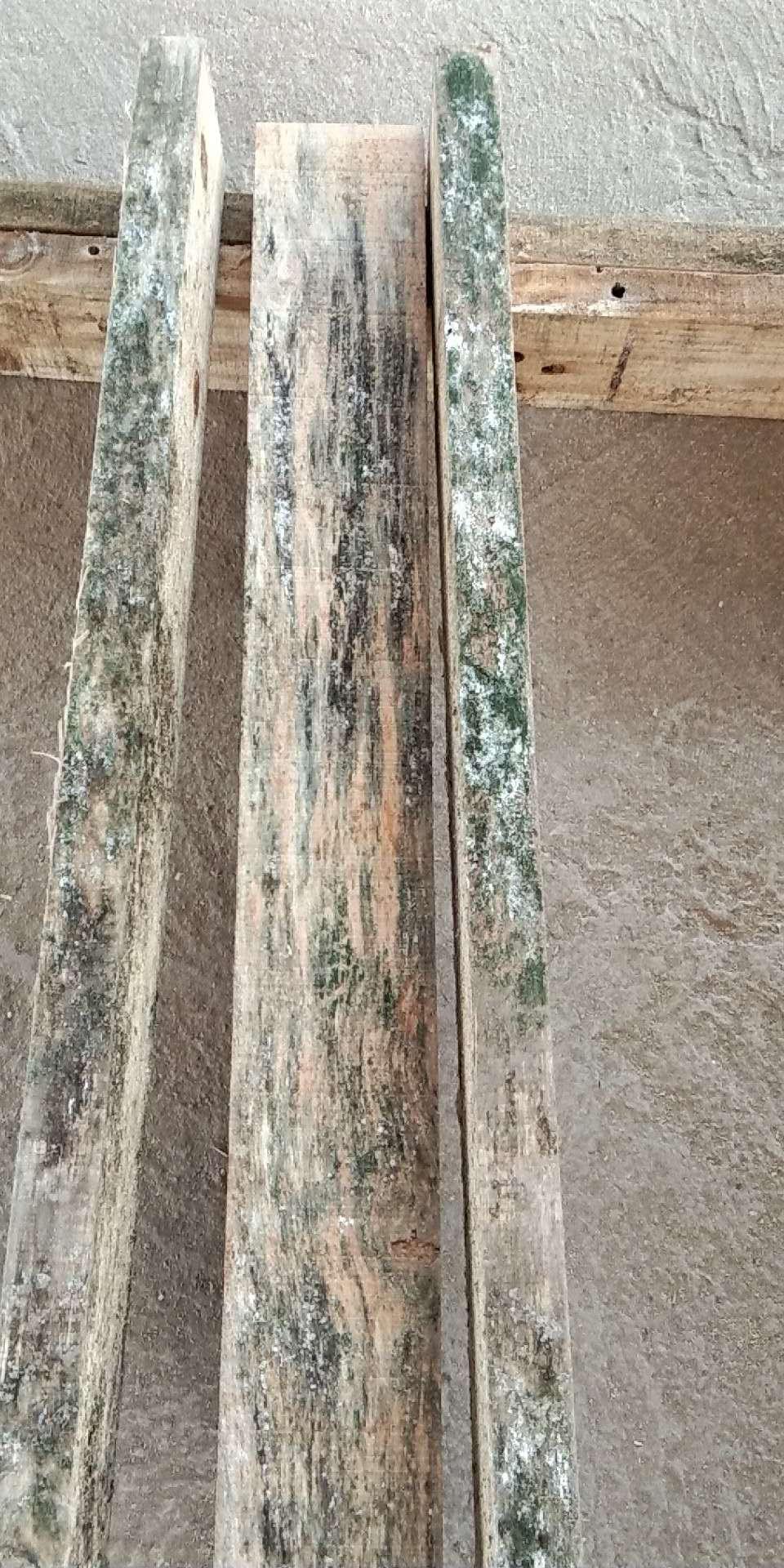 木材防霉剂.jpg